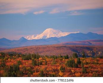 Forty Mile country, Alaska