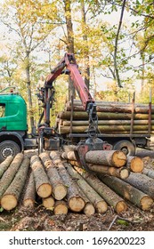 Forwarder with forestry crane loading lumber during timber harvesting in the forest