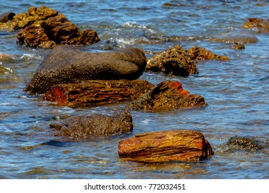 "Fossilized colorful tree trunks in the sea from the UNESCO Geopark ""Petrified Forest of Sigri"" on the island of Lesvos in Greece."