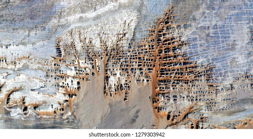 the fossilized forest, tribute to Pollock, abstract photography of the deserts of Africa from the air, aerial view, abstract expressionism, contemporary photographic art, abstract naturalism,