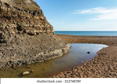 Fossils and Geology of Brook Bay - Isle of Wight