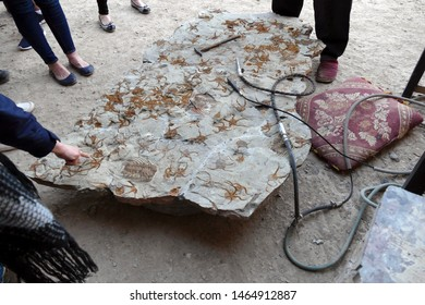 Fossils that are hundreds of millions years old, Erfouad,  Morocco, Africa