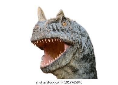 Fotosaurus isolated on the white background