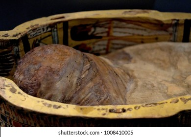 Found during archaeological excavations, the ancient embalmed Egyptian mummy in a wooden sarcophagus