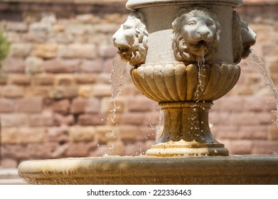 A fountain in the cathedral square of Frejus, France, offering cool shade in summer heat.