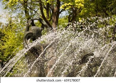 Fountain and decorative lake in park composition