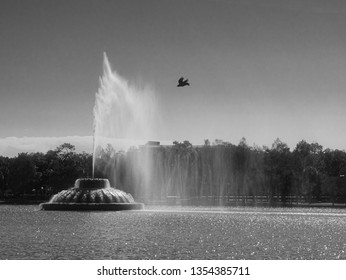 Fountain in the middle of the Park