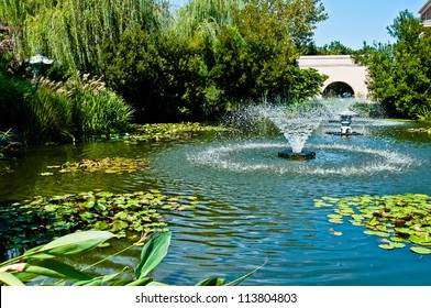 Fountain in middle of a water garden of lily pads and other plants.