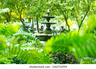 Fountain multi-tiered ancient style in green garden shoot through green branches of tree.