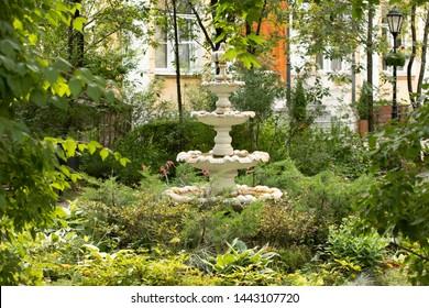 Fountain in a neglected garden.