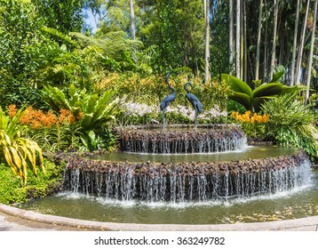 fountain with orchids in botanical garden of Singapore