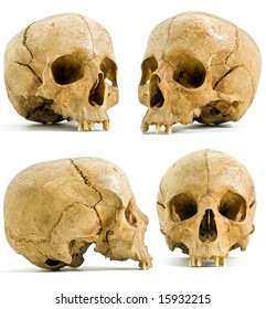 four angels of human skull isolated on white