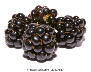 four blackberries on a white background