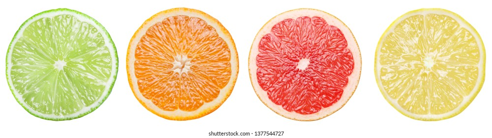 Four colorful different citrus slices on white background. File contains clipping path.