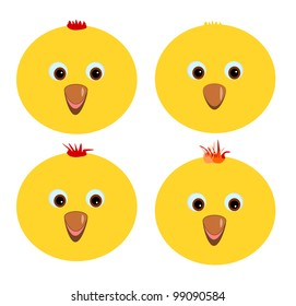 Four different chickens