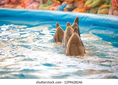 four dolphins  swimming show  on pool to people