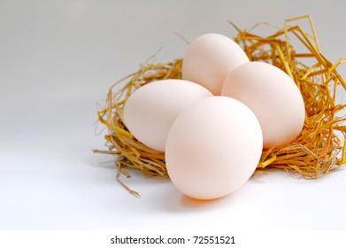 Four eggs on the net