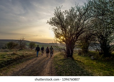 Four friends walking outdoors in front of beautiful spring sunset