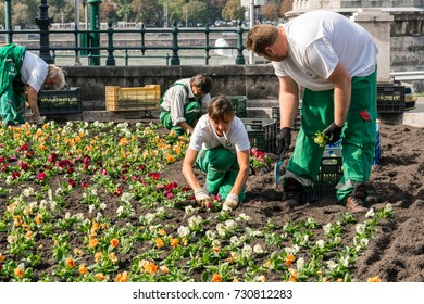 Four garden workers plants flowers. Budapest, Hungary - September 27, 2017: Four garden workers who plants colorful flowers in a flowerbed in Budapest to embellish a public area next to Danube river.