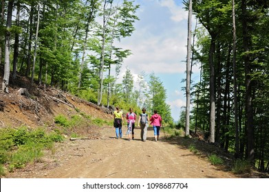 Four girls walking in the mountain forest, Beskidy, Poland