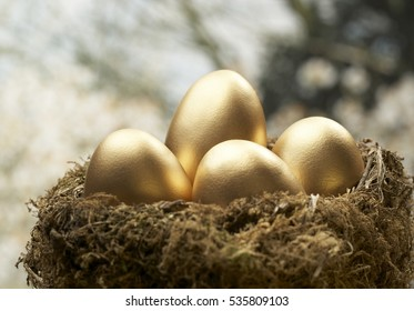 FOUR GOLD EGGS IN BIRDS NEST WITH TREE IN BACKGROUND