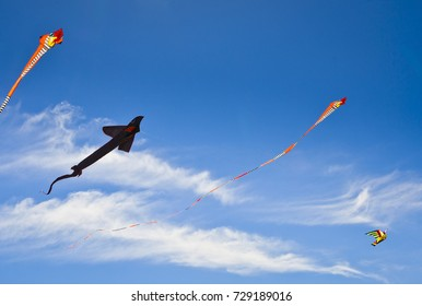 Four kites flying in the Sky