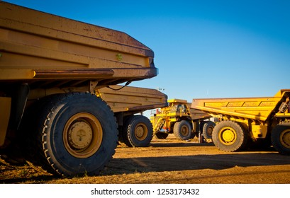 Four large yellow trucks used in modern mines and quarries for hauling industrial quantities of ore or coal. Photographed at sunset in golden light. Blackwater, Australia. Logos removed.