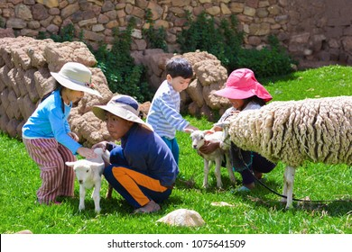 Four latin children taking care of newborn lamb.