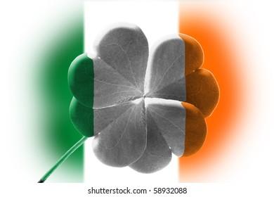 Four leaf clover shamrock wrapped in color of Irish Flag illustration