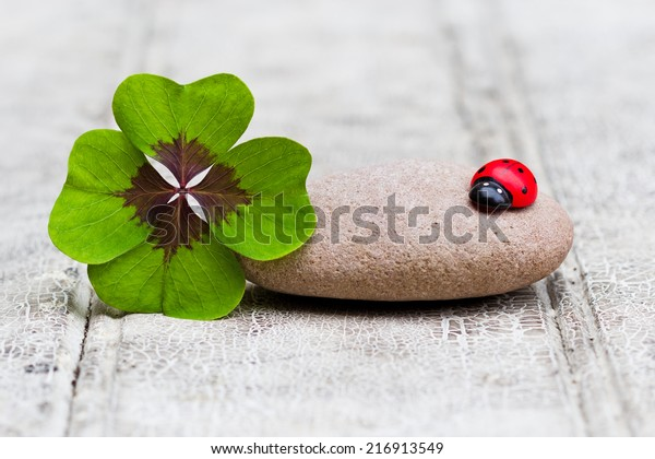 four leaf clover with stone and ladybug on wood, copy space