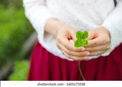 Four leaf clover that a woman has