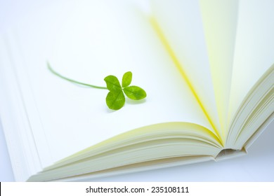 Four leaves and blank book