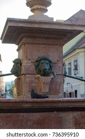 """The """"Four Lions"""" fountain was erected in 1799, in honor of the completion of works around the first water supply system in Sremski Karlovci"""