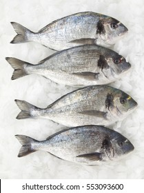 four pieces of fresh dorado fish on ice