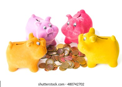 Four pig piggy bank near coins guests, isolated on white background