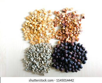 Four Processing of coffee,Coffee production , dried coffee cherry ,coffee bean wet processed ,coffee bean dry processed processed,green bean coffee.