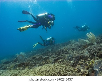 Four scuba divers above a coral reef