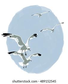 Four seagulls in flight