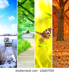 four seasons collage, several images of beautiful natural landscapes at different time of the year - winter spring, summer, autumn, planet earth life cycle concept - Shutterstock ID 126657554