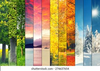 四季拼贴,一年中不同时间的美丽自然景观几幅图像,秋冬春夏天天气,行星地球生命周期概念