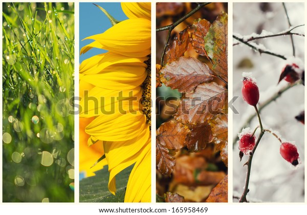 Four seasons collage:  Spring, Summer, Autumn, Winter