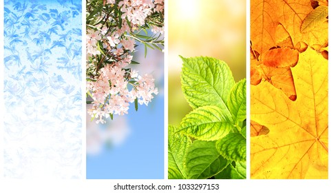 Four seasons of year. Set of vertical nature banners with winter, spring, summer and autumn scenes