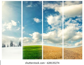 four seasons of year, winter, spring, summer and autumn, nature photo concept