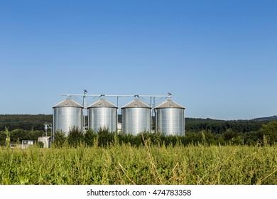 four silver silos in field under bright blue sky