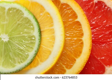 Four slices of citrus fruits, closeup