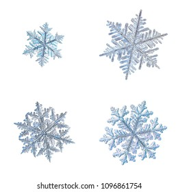 Four snowflakes isolated on white background. Macro photo of real snow crystals: large stellar dendrites with elegant, ornate shapes, fine hexagonal symmetry and complex structure.