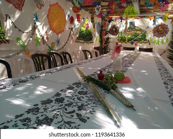 Four Species by Jewish tradition  A young palm  Lulav, willow Hadas and citrus fruit citron on long table for the holiday of Sukkot A Sukkah decorated With colored paper decoration shadow on table
