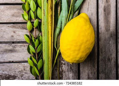 Four Species are plants mentioned in the Torah as being relevant to Sukkot.