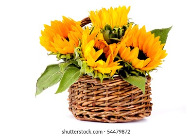 Four sunflowers in a basket