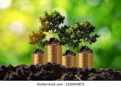 Four trees in soil on the top of coin stack 4 rolls,investment,business growth concept,copy space.